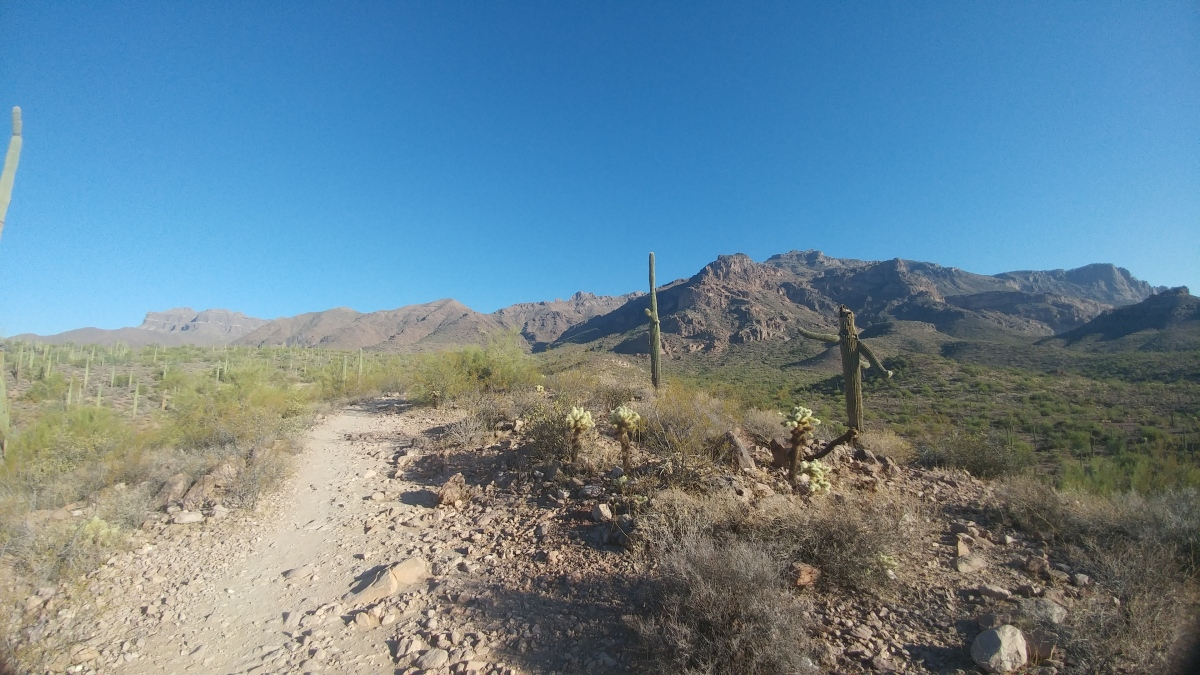 Walking with Ghosts in the Superstition Mountains